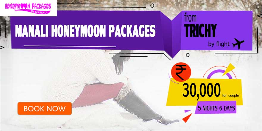 Honeymoon Packages in Manali from Trichy