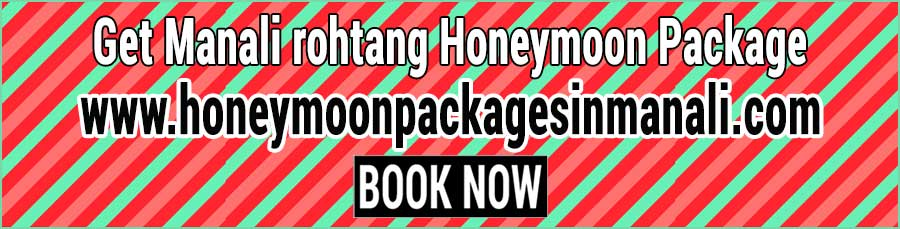 Book Manali rohtang Honeymoon Package
