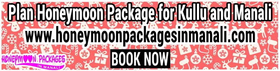 Honeymoon Package for Kullu and Manali