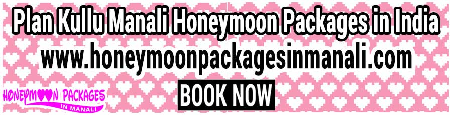 Kullu Manali Honeymoon Packages in india