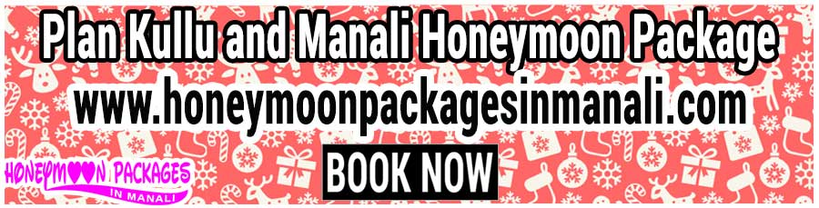 Kullu and Manali Honeymoon Package