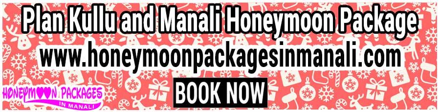 Kullu and Manali Honeymoon Package