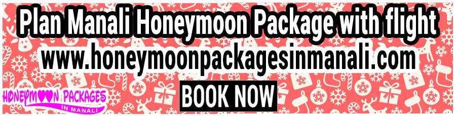Manali Honeymoon Package with flight