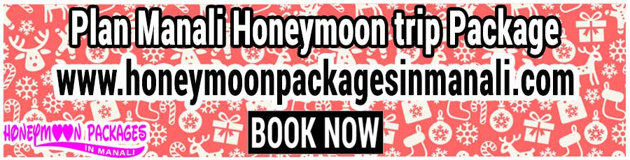 Manali Honeymoon trip Package