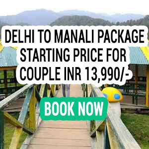 Honeymoon packages in Shimla Kullu Manali